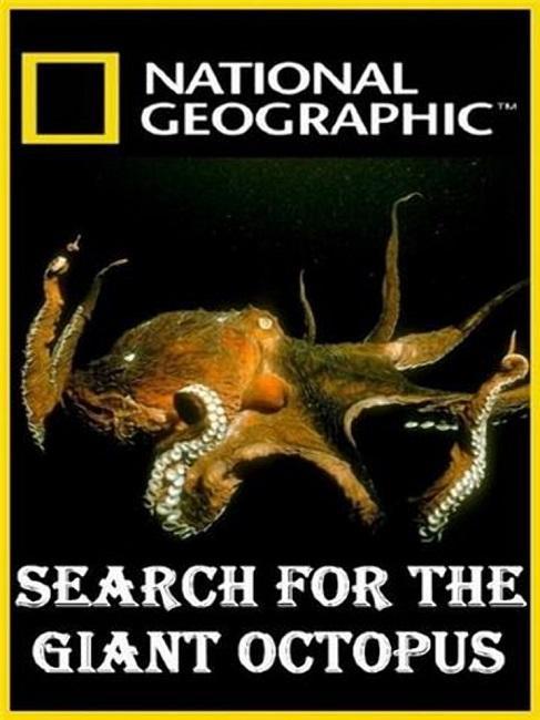 National Geographic. В поисках гигантского осьминога