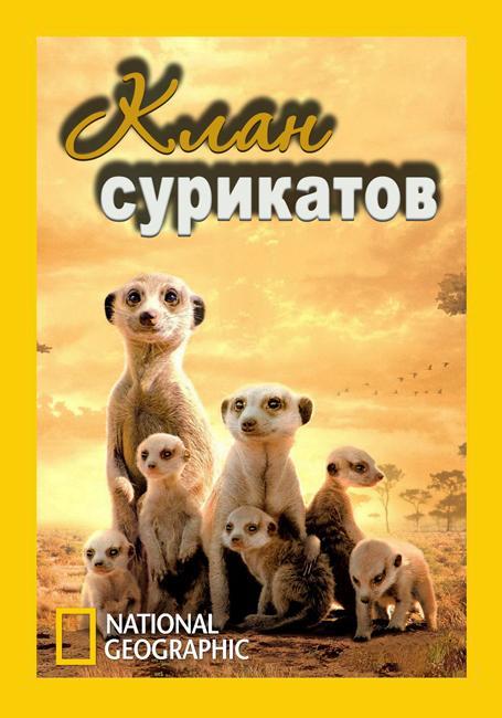 National Geographic. Клан сурикатов