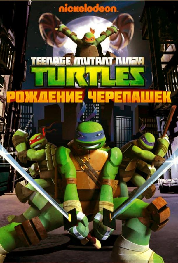 Черепашки-ниндзя / Teenage Mutant Ninja Turtles (2012)