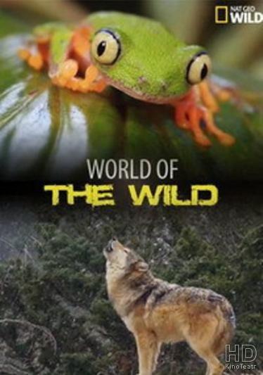 Мир дикой природы / World of the Wild (2016)