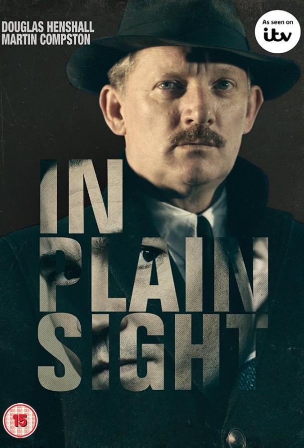На виду / In Plain Sight (2016)