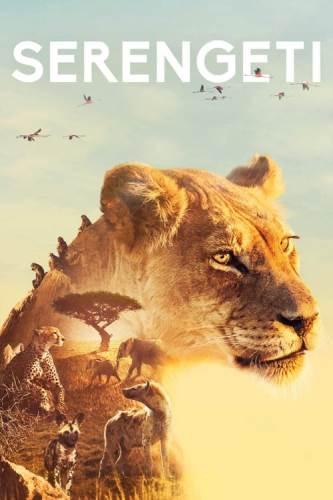 BBC: Серенгети / Serengeti (2019)