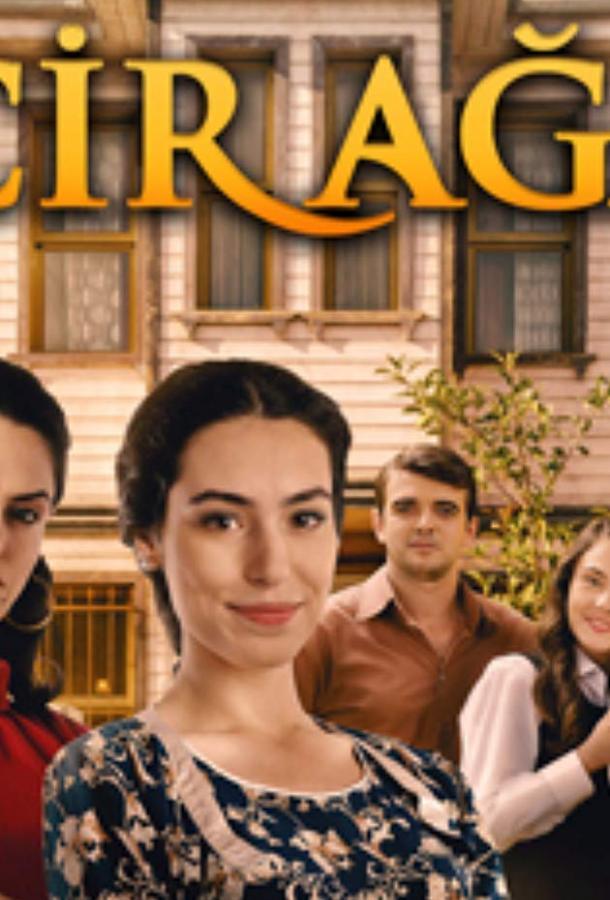 Фиговое дерево / İncir Ağacı (2019) смотреть онлайн 1 сезон