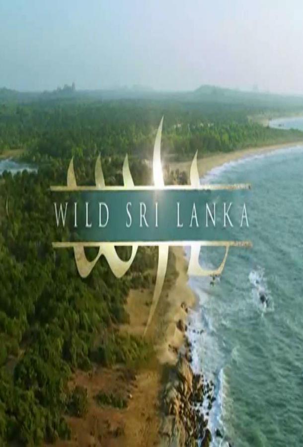 Дикая Шри Ланка