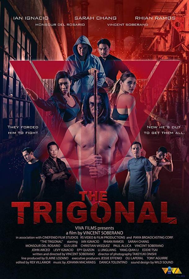 Тригонал: Борьба за справедливость / The Trigonal: Fight for Justice (2018)