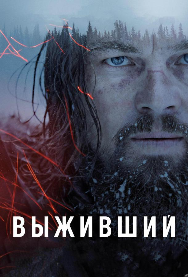 Выживший (2015) BD