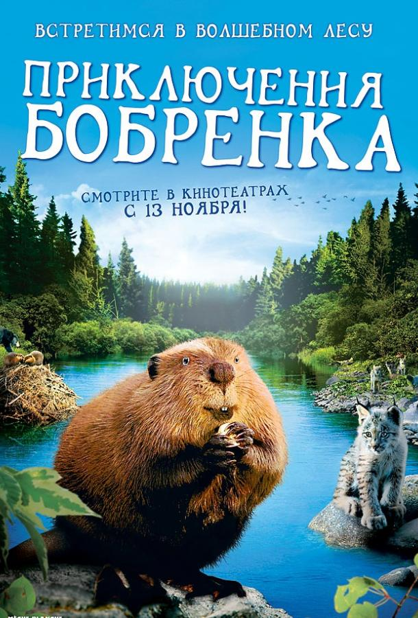 Приключения бобрёнка / Meche Blanche, les aventures du petit castor (2008)