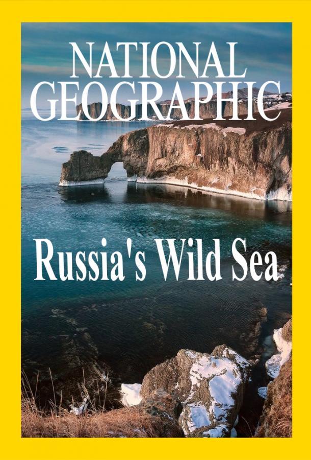 Дикое море России