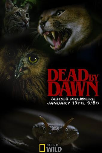 Дожить до рассвета / Dead by Dawn (2019) смотреть онлайн 1 сезон