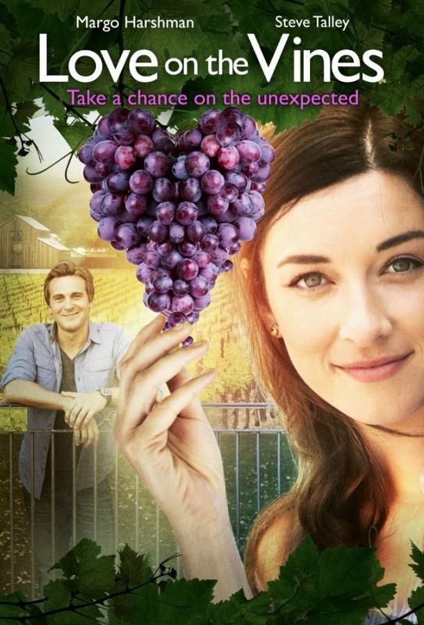 Любовь на винограднике (2017)