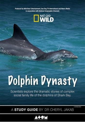 Династия дельфинов (2016)