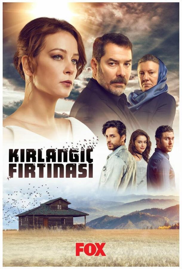 Шторм ласточки / Kirlangic Firtinasi (2017) смотреть онлайн 1 сезон
