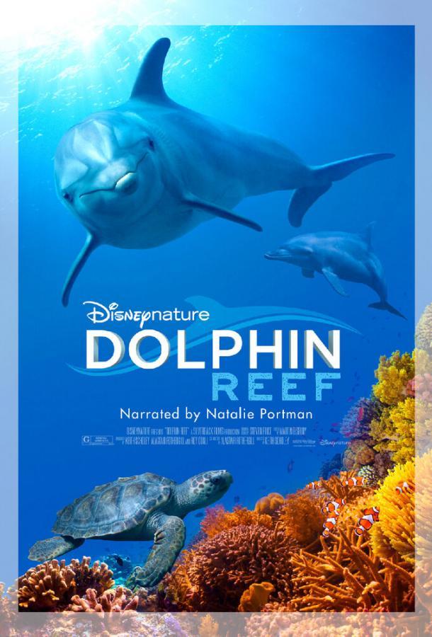 Дельфиний риф (2020)