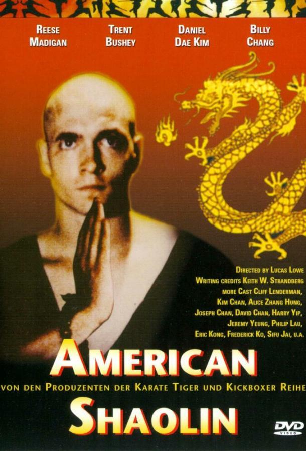 Американский Шаолинь (1991)