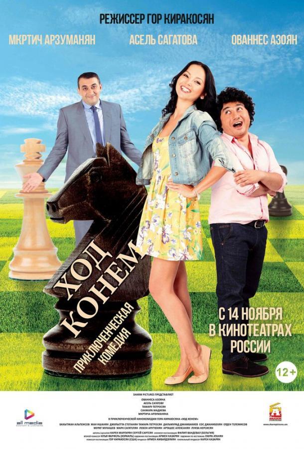 Ход конём / The Knight's Move (2013)