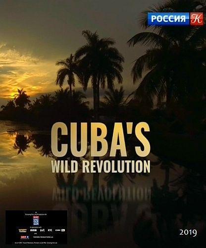 Живая природа Кубы