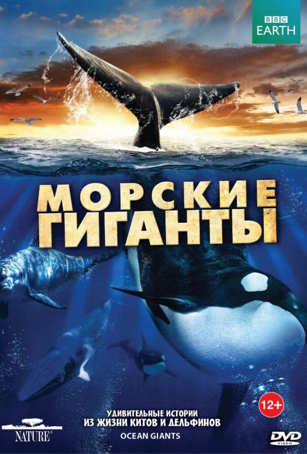 BBC: Морские гиганты / Ocean Giants (2011)