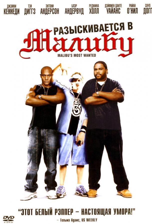 Разыскиваются в Малибу 2003 смотреть онлайн в хорошем качестве