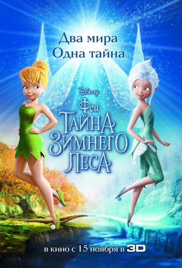 Феи: Тайна зимнего леса 2012 смотреть онлайн в хорошем качестве
