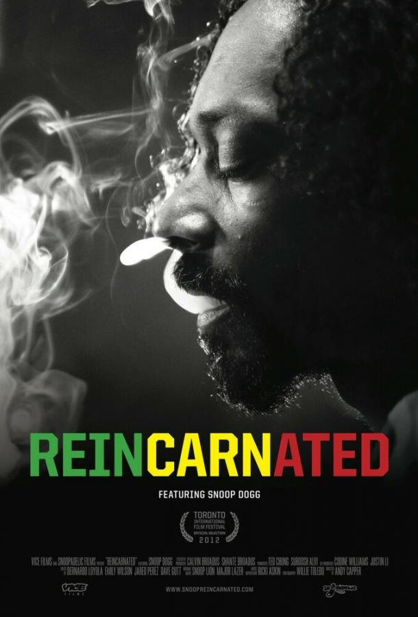 Перевоплощённый / Reincarnated (2012)
