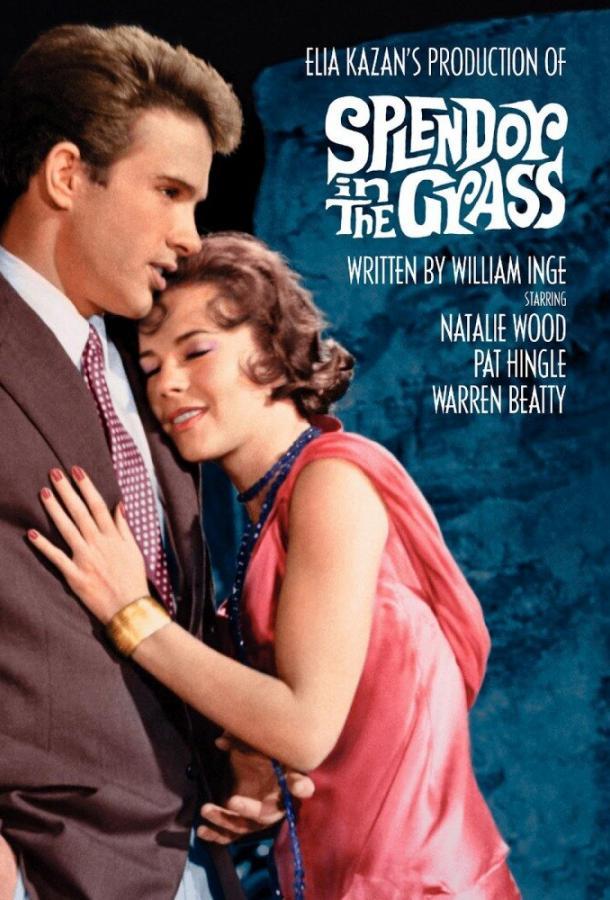 Великолепие в траве / Splendor in the Grass (1961)