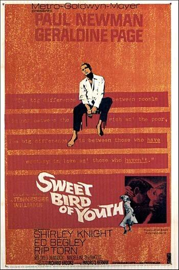 Сладкоголосая птица юности / Sweet Bird of Youth (1962)