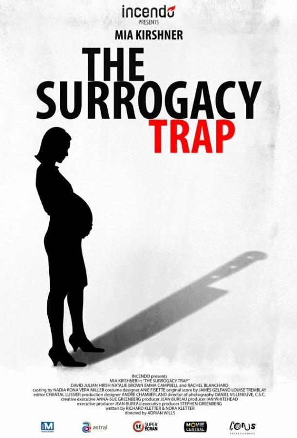 Ловушка суррогатного материнства (2013)