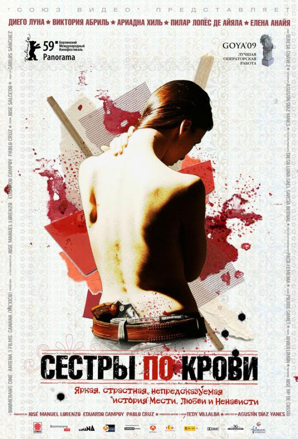 Сестры по крови / Solo quiero caminar (2008)