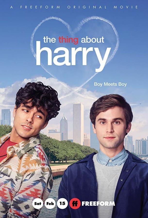 Кое-что о Гарри (2020)