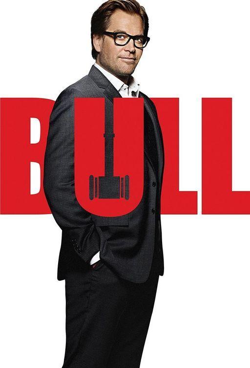 Мистер Булл (2016)