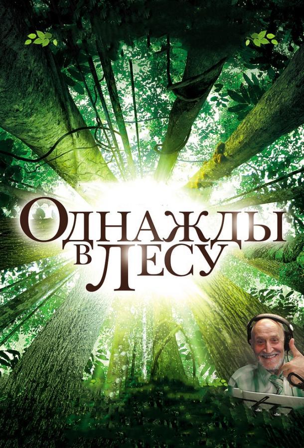 Однажды в лесу / Once in the Forest (2013)
