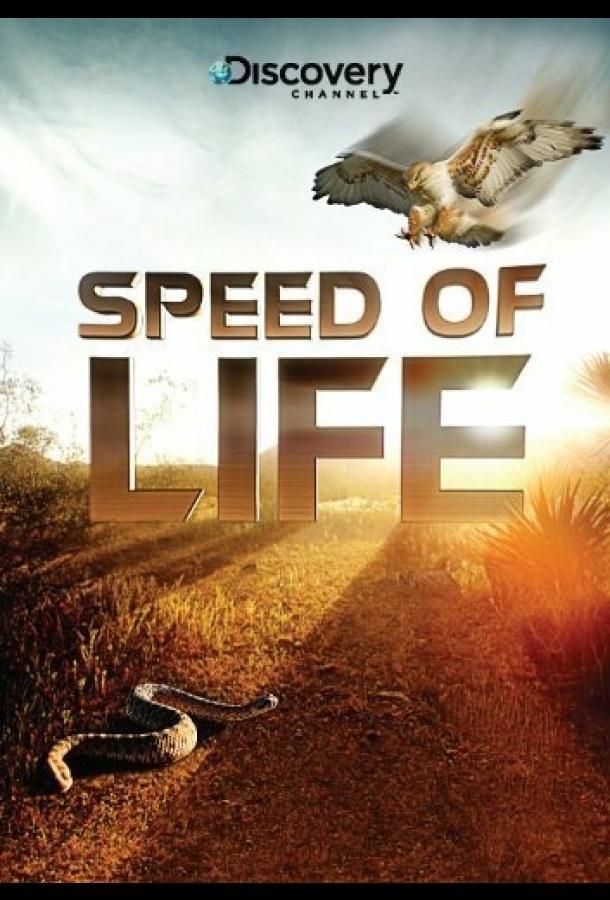 Скорость жизни / Speed of Life (2010)