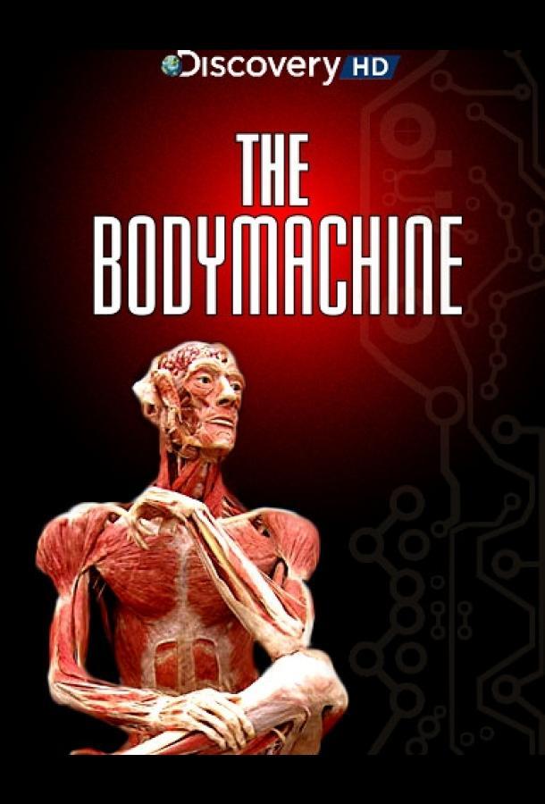 Механизм тела / The Body Machine (2008)