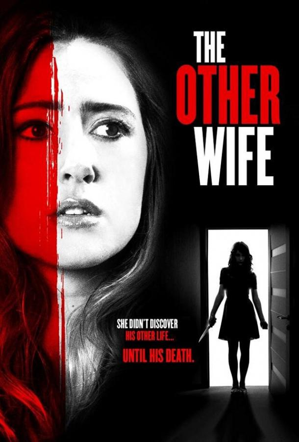 Другая жена (2016)