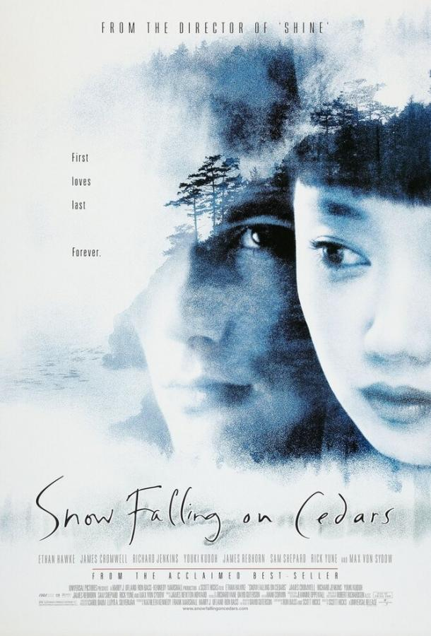 Заснеженные кедры / Snow Falling on Cedars (1999)