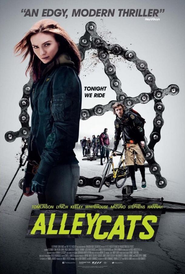 Уличные коты (2016)