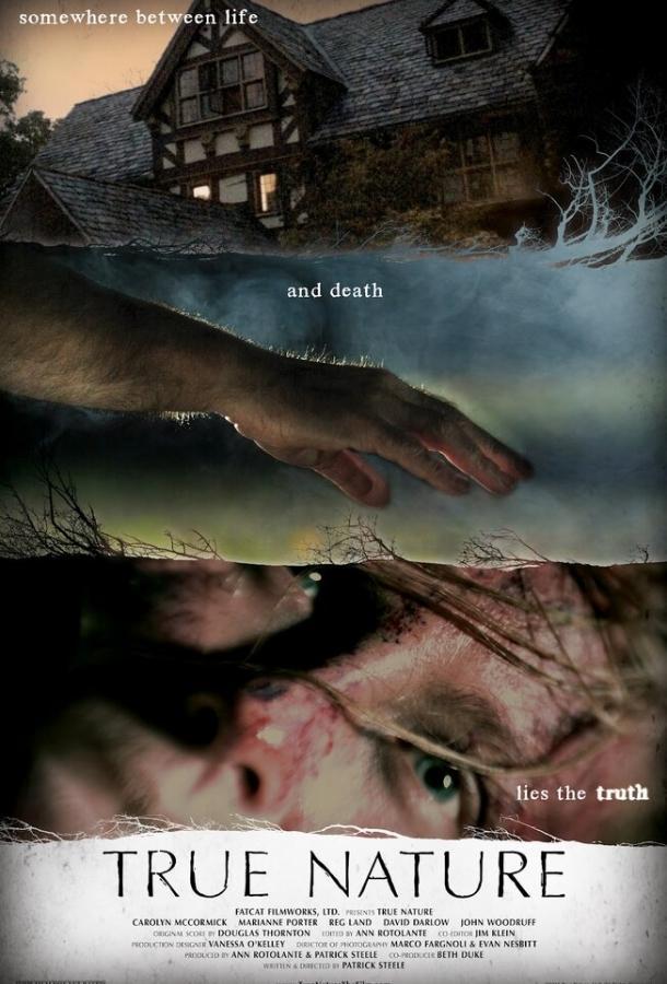 Истинная суть / True Nature (2010)