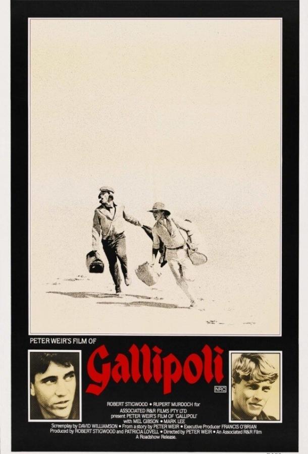 Галлиполи / Gallipoli (2015)