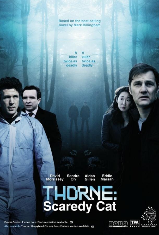 Торн: Пуганая ворона / Thorne: Scaredycat (2010)