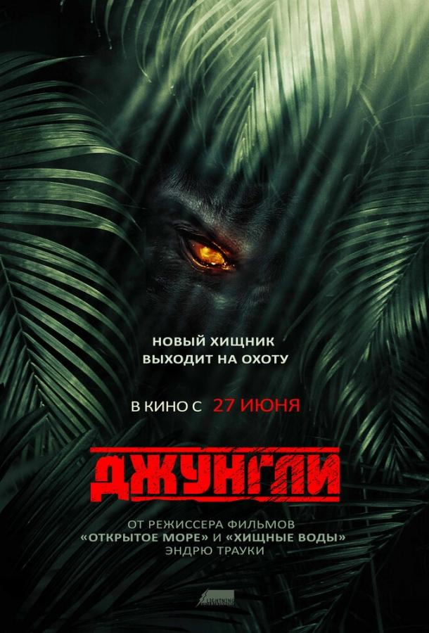 Джунгли / The Jungle (2013)
