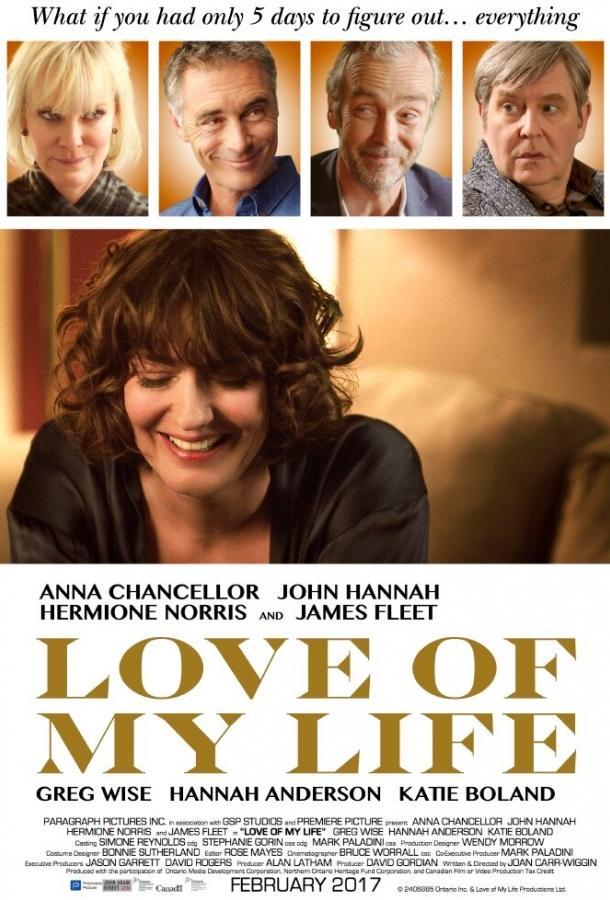 Любовь всей моей жизни / Love of My Life (2017)