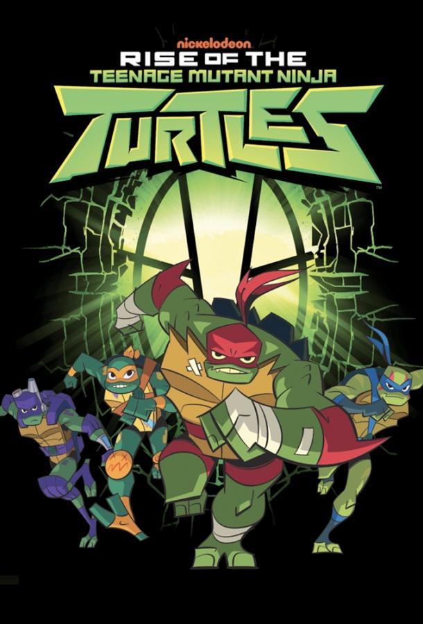 Эволюция Черепашек-ниндзя / Rise of the Teenage Mutant Ninja Turtles (2018)