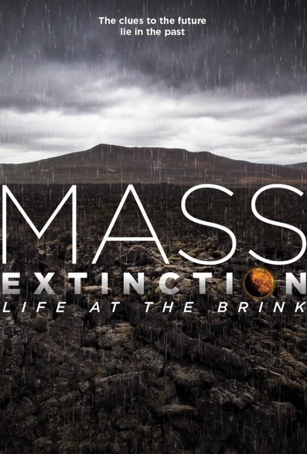Планета на грани исчезновения (2014)