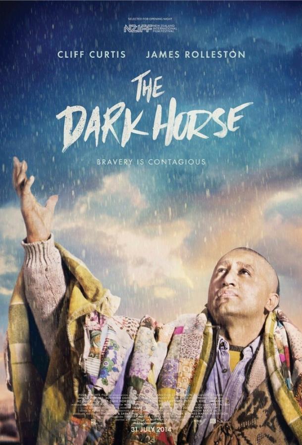 Тёмная лошадка (2014)