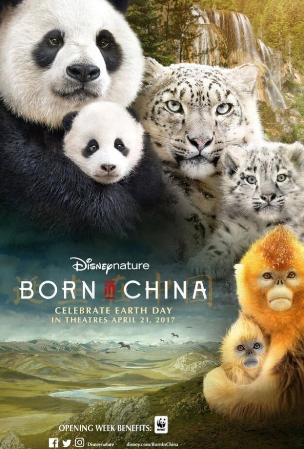 Рожденные в Китае / Born in China (2016)