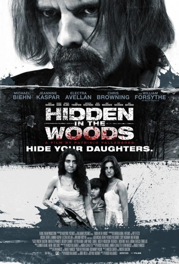 Спрятанный в лесу / Hidden in the Woods (2014)