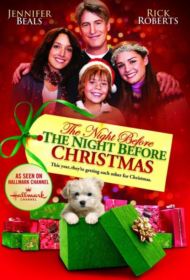 Рождественские приключения семейства Фоксов / The Night Before the Night Before Christmas (2010)