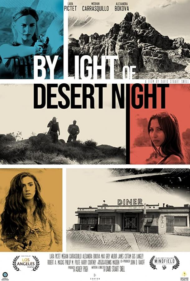 При свете пустынной ночи (2019)