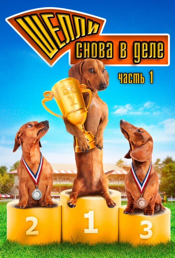 Шелли снова в деле: Часть 1 / Wiener Dog Nationals (2013)