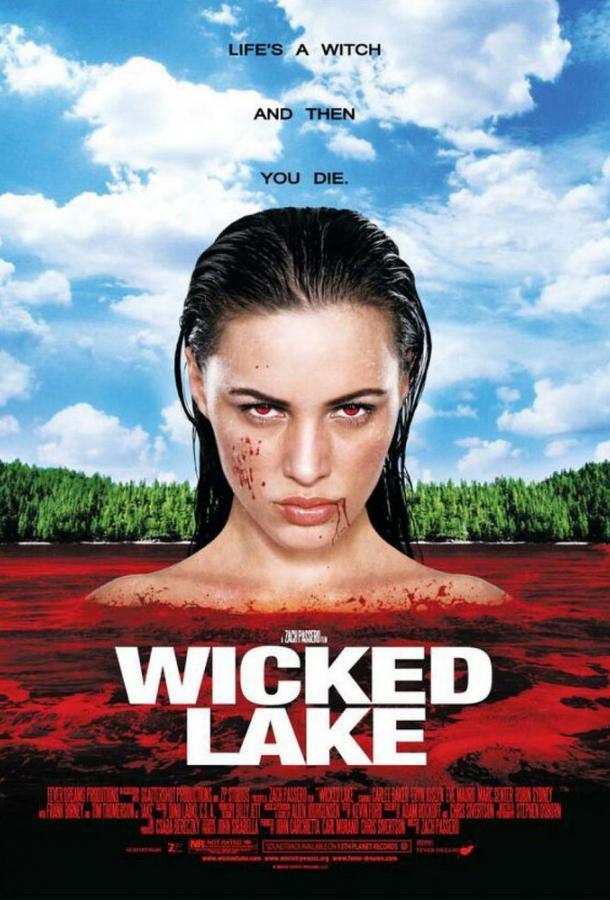 Заколдованное озеро (2008)